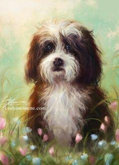 Фото Милый щенок сидит в цветах, by Amourinette
