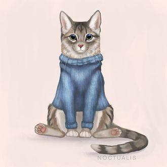 Фото Кот в вязаном свитере, by Noctualis