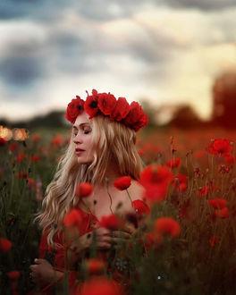 Фото Девушка в венке на маковом поле, by Camera Queen
