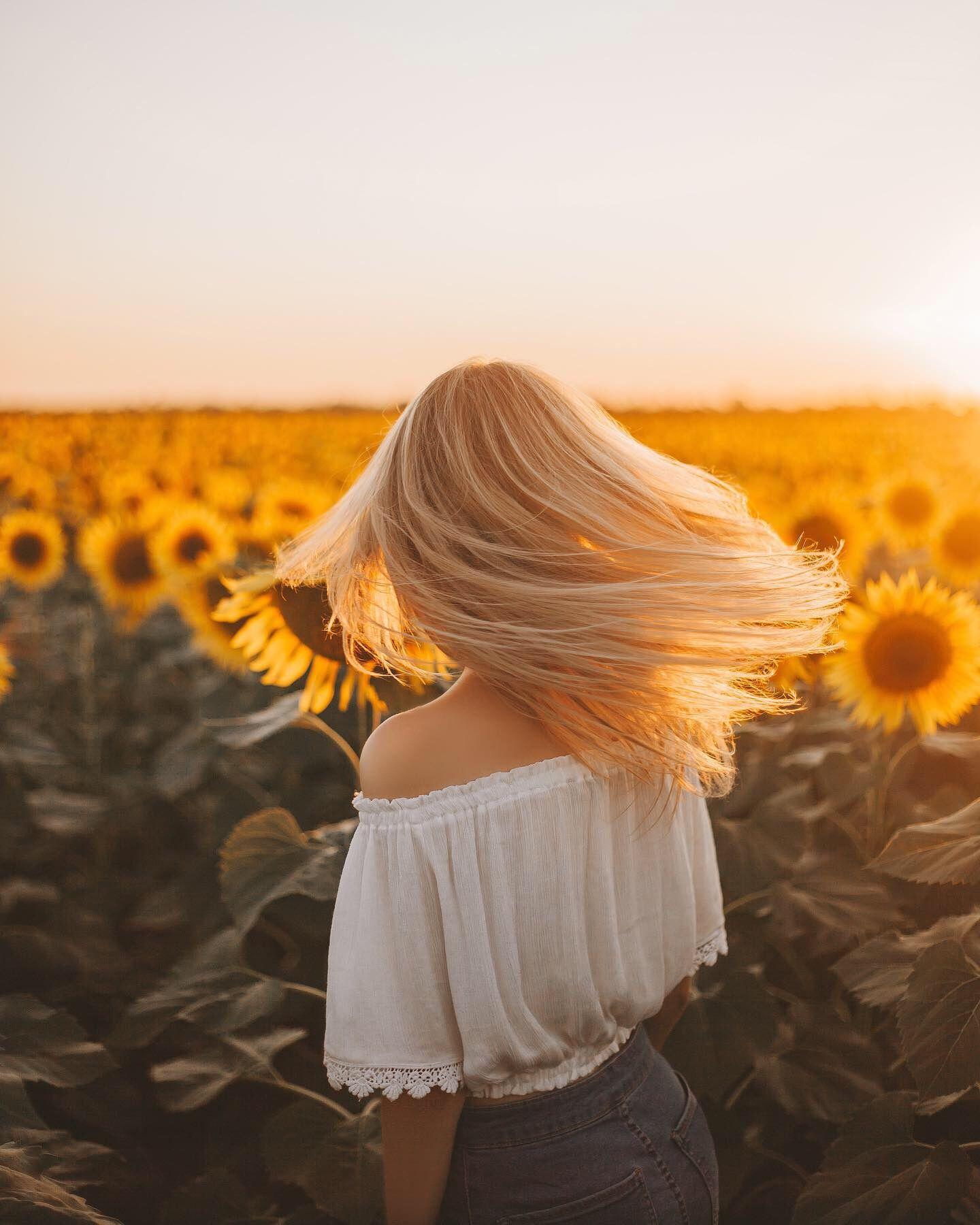 Фото Девушка с длинными волосами смотрит на поле подсолнухов