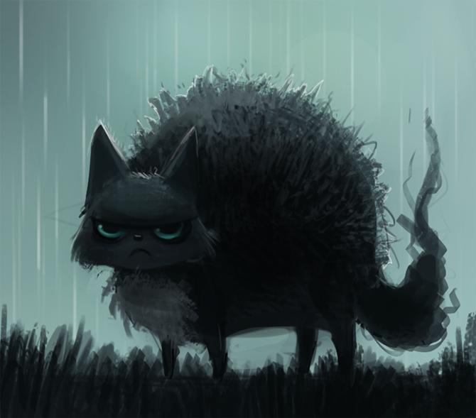 Фото Голубоглазый кот под дождем, by Cryptid-Creations