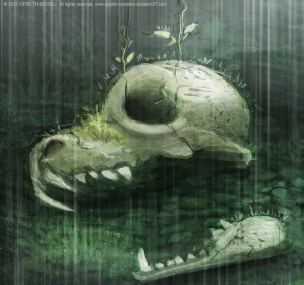 Фото Череп под дождем, by Cryptid-Creations