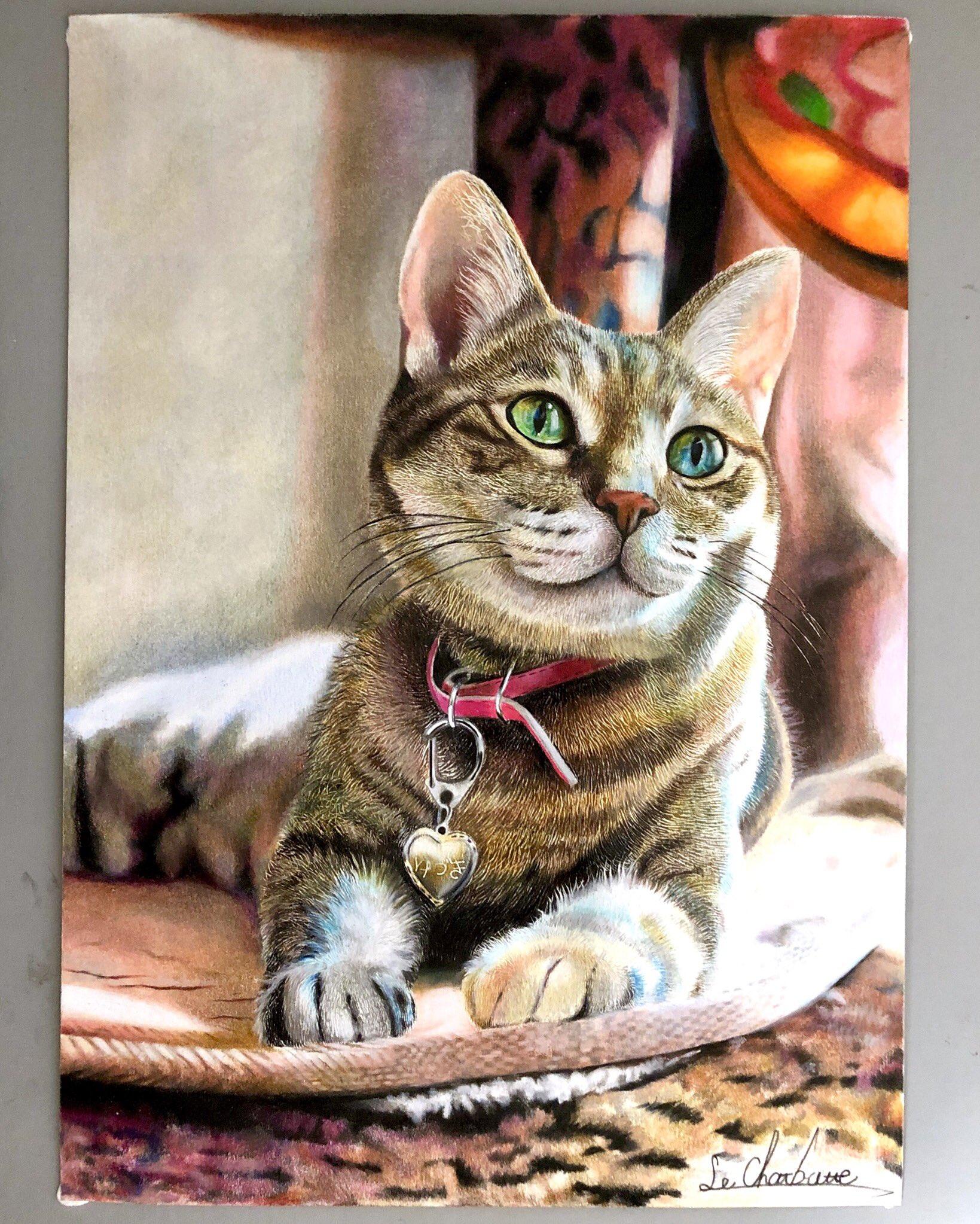 Фото Нарисованная кошка с брелком на шее