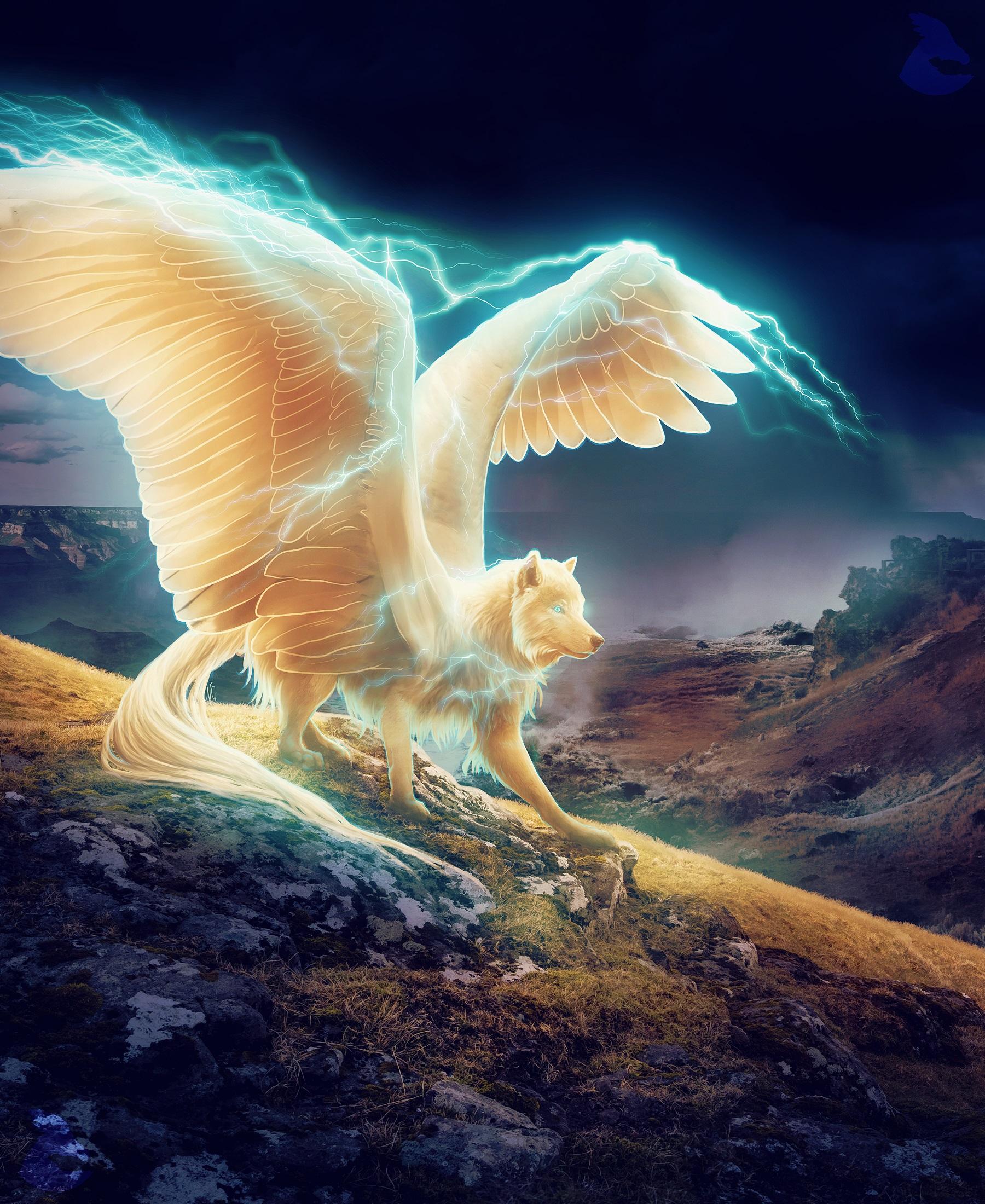 Красивые фото крылатых волков менее