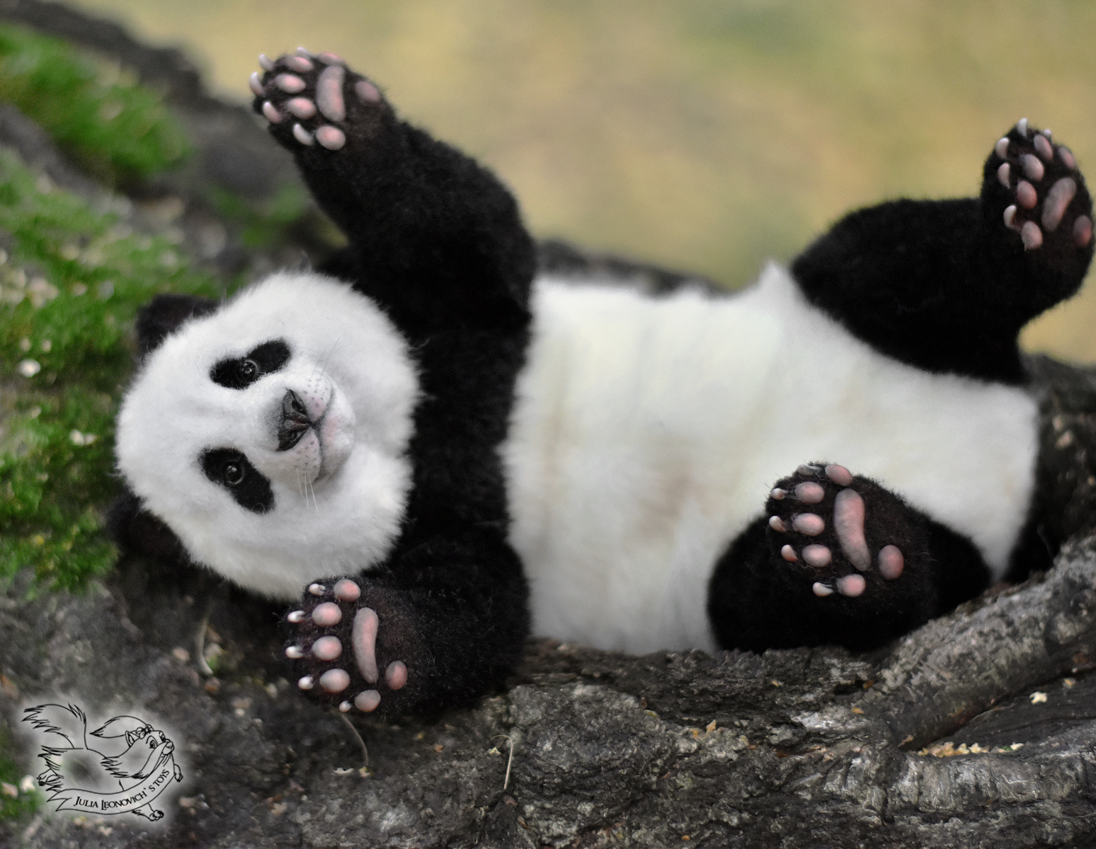 Ноги панды картинки