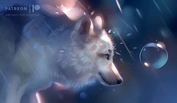 Фото Белый волк под дождем, by Apofiss