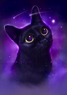 Фото Черная кошка на фоне космоса, by Martith