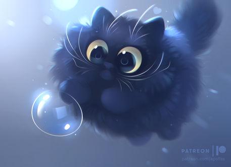 Фото Черный пушистый котенок играет с пузырем, by Apofiss
