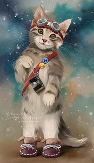 Фото Полосатый котенок в очках на мордочке, by Kajenna