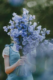 Фото Девочка прикрыла себя букетом колокольчиков, которые она держит в руках, фотограф Anita Austvika