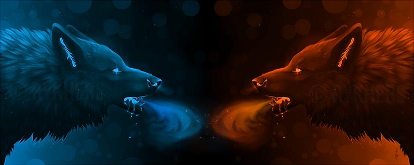 Фото Два волка-огонь и лед, by Rykhers