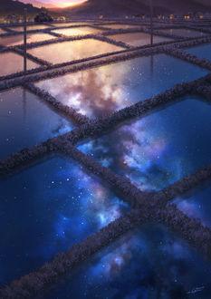 Фото В воде на рисовом поле отражается ночное небо и млечный путь, by NIK