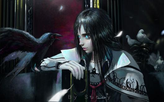 Фото Девушка смотрит на ворона, by Sun ny