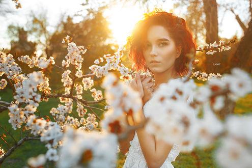 Фото Модель Мария Ларина позирует среди весенних веток, фотограф Аlexander Drobkov