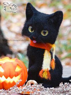 Фото Черный котенок сидит у тыквы, by YuliaLeonovich