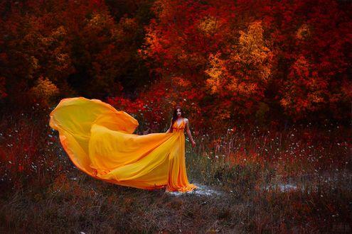 Фото Девушка в желтом платье стоит на фоне осенних деревьев, фотограф Светлана Беляева