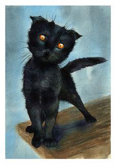 Фото Мокрый черный котенок, by lariel-istime