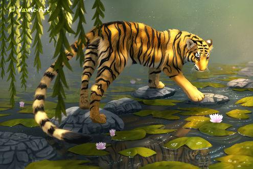 Фото Тигр идет по каменной дорожке в пруду, by Vawie-Art