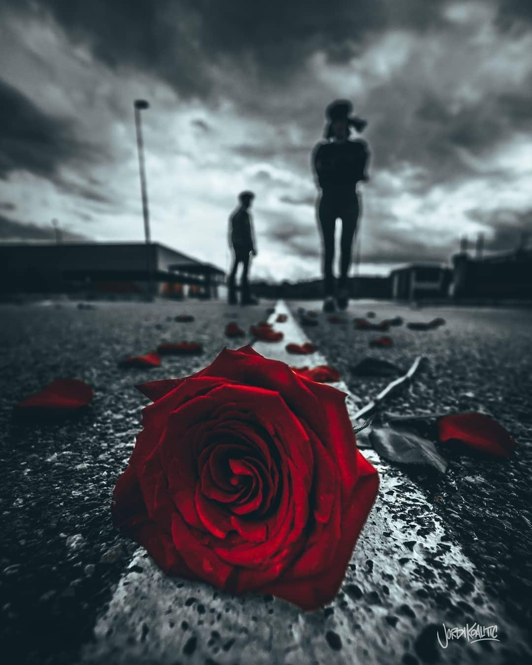 Фото Красная роза лежит на дороге, на втором плане парень, уходящий от девушки, by Jordi Koalitic