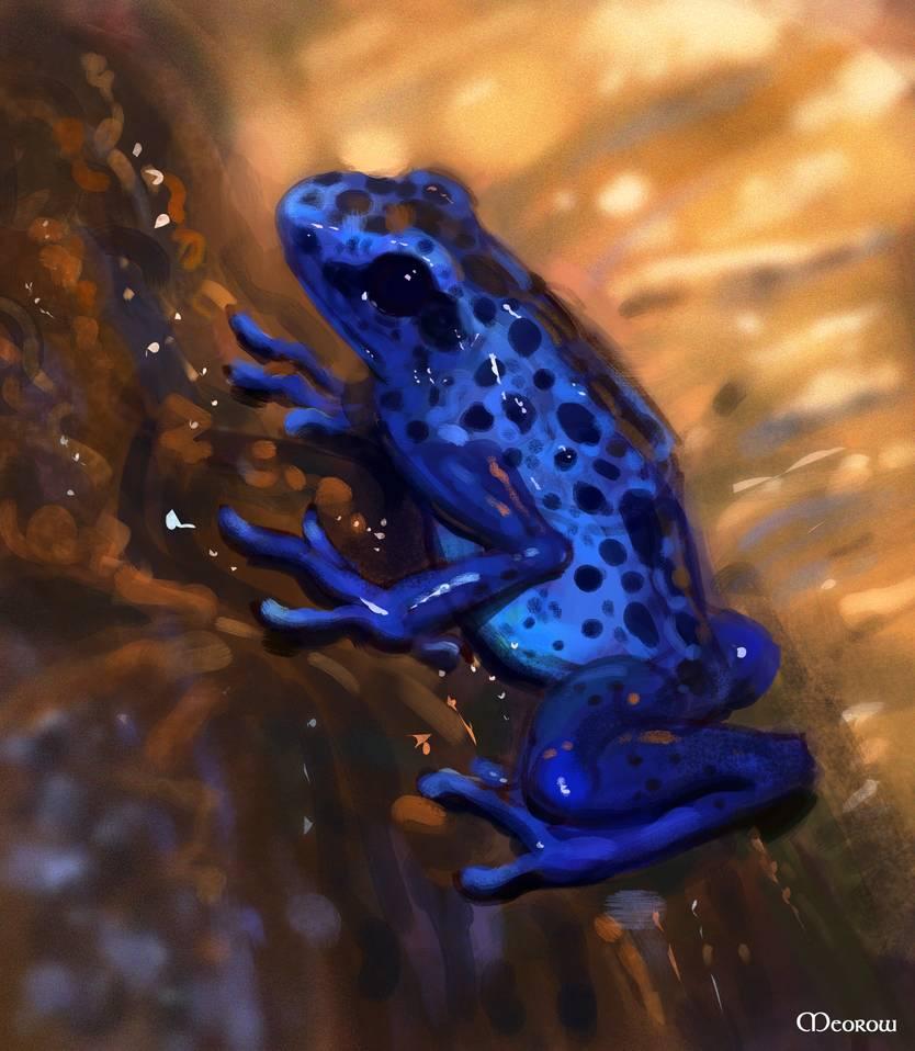 как картинки голубых лягушек сегодня поговорим