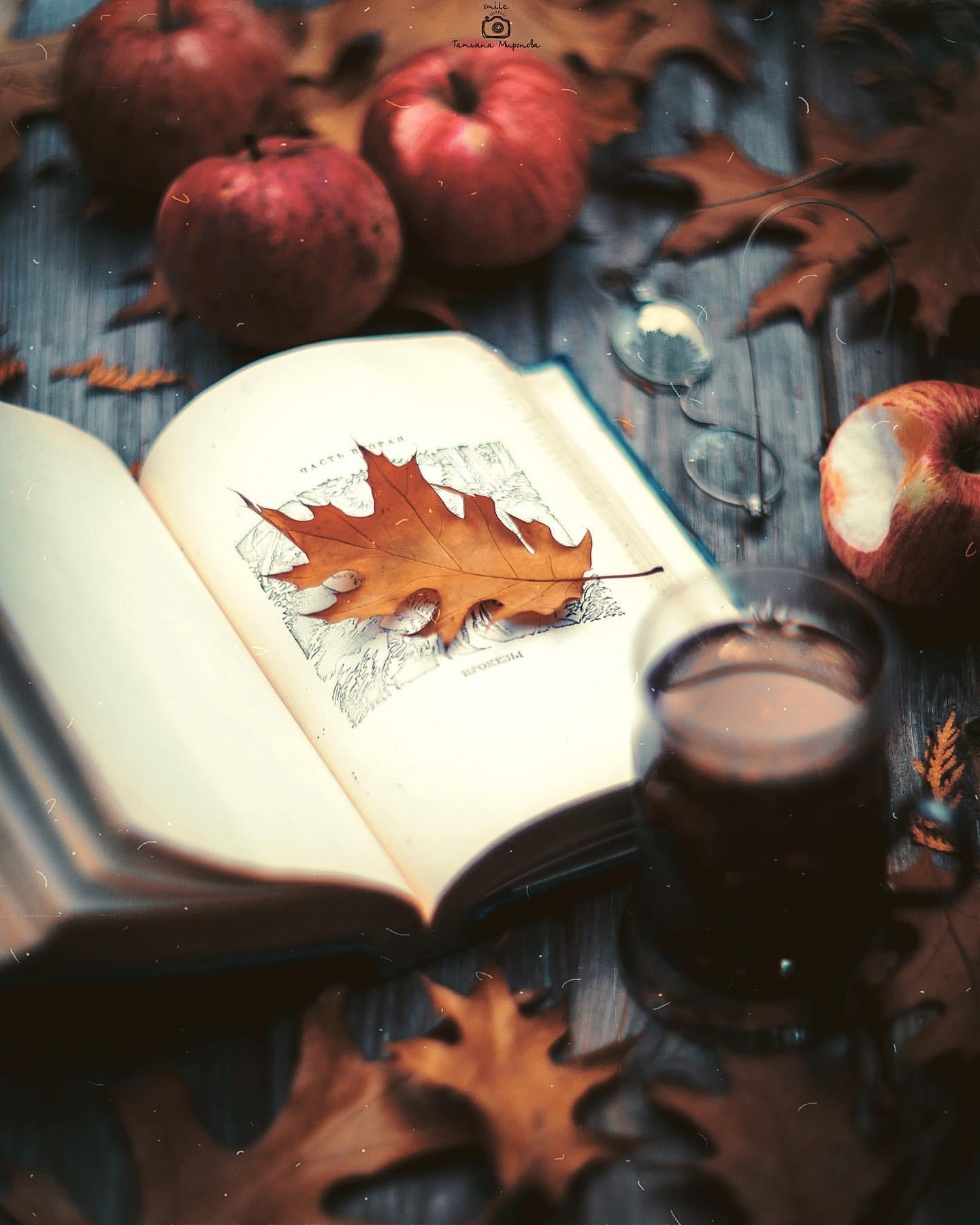 Фото Дубовый осенний листик на открытой книге, яблоки, очки и стакан чая на столе, фотограф Татьяна Миронова - mironovatanyahoos