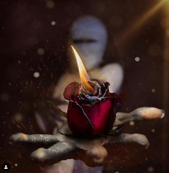 Фото Горящая роза на руке человека