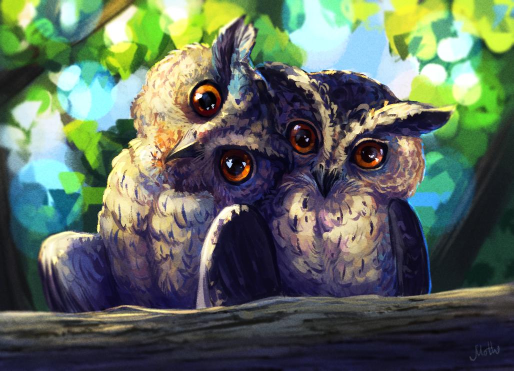 Две совы картинка рисунок