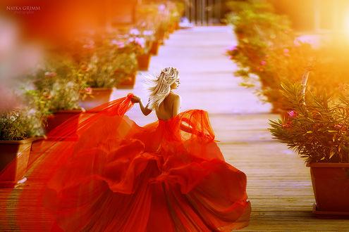 Фото Девушка в красном пышном платье. Фотограф Натка Гримм