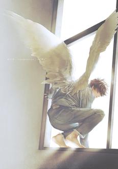 Фото Парень-ангел собирается выпрыгнуть из окна, by Re°