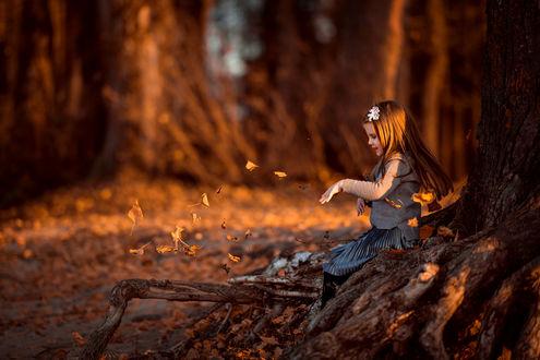 Фото Девочка смотрит на осеннюю листву. Фотограф Татьяна Гуз