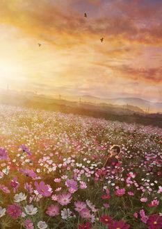Фото Девушка стоит среди цветов космеи, by Kupe