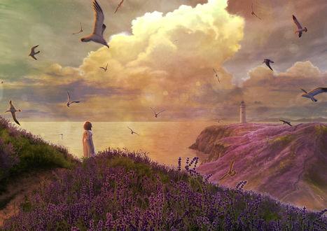 Фото Девушка стоит на холме, покрытом цветами лаванды, by Kupe