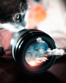 Фото Кошка смотрит на съемный объектив, из которого плывут облака, by Emmy K
