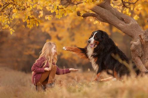 Фото Девочка протянула руку к лапе собаки. Фотограф Марина Бережная