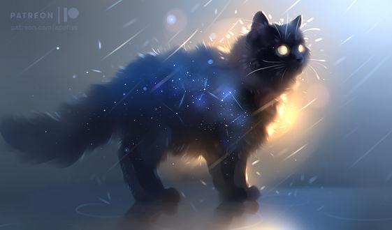 Фото Черная кошка со светящимися глазами, by Apofiss