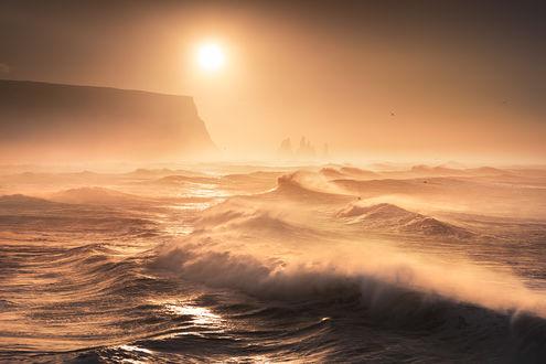 Фото Dyrholaey / Дирхолеей, ранее известный морякам как мыс Портленд, Испандия. Фотограф Karol Nienartowicz