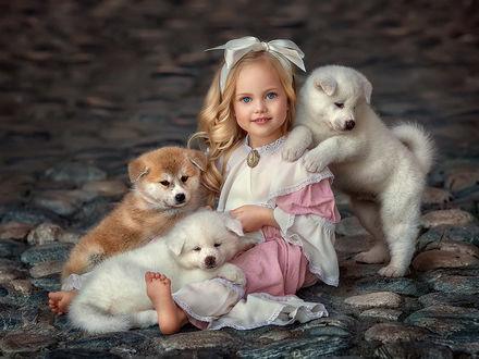 Фото Девочка сидит на каменной брусчатке с щенками, фотограф Елена Михайлова