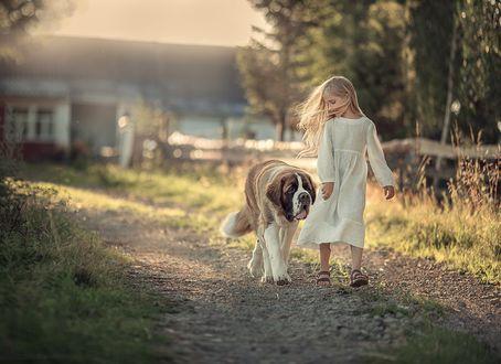 Фото Прогулка девочки с собакой породы сенбернар. Фотограф Степанова Дарья