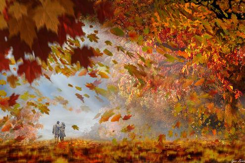 Фото Влюбленные прогуливаются по осеннему парку. Фотохудожник Igor Zenin