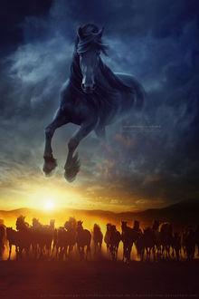 Фото Над табуном лошадей в небе скачет вороной конь, by kuschelirmel