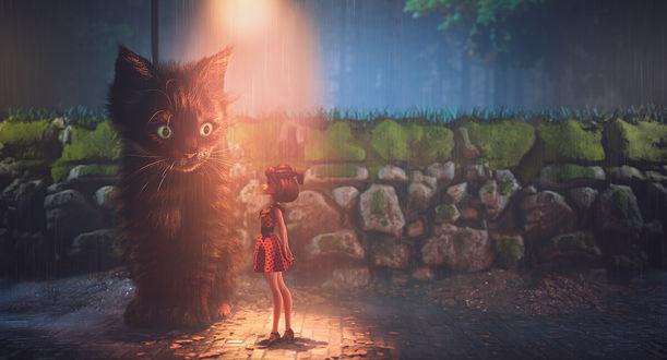 Фото Девочка стоит перед котом, by Alina Makarenko