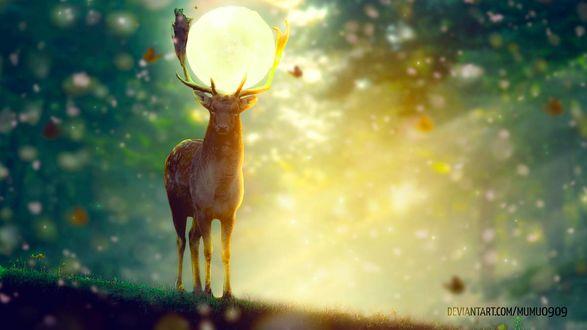 Фото Олень с луной между рогами, by mumu0909