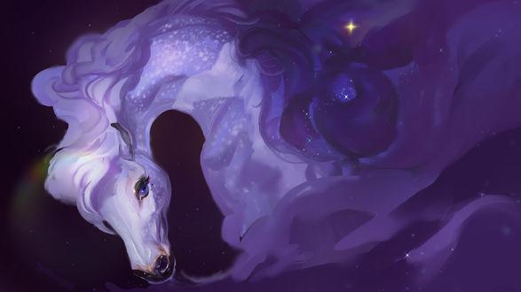 Фото Сказочная лошадь, by MUSONART