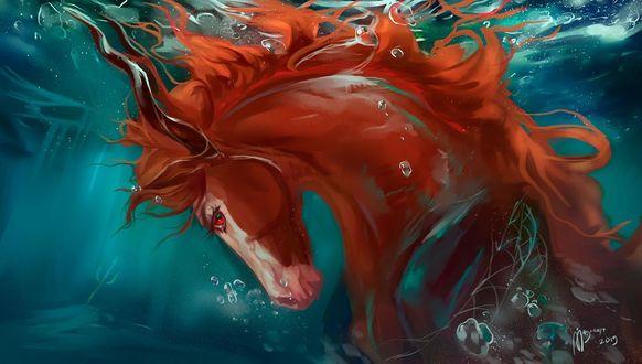 Фото Лошадь под водой, by MUSONART