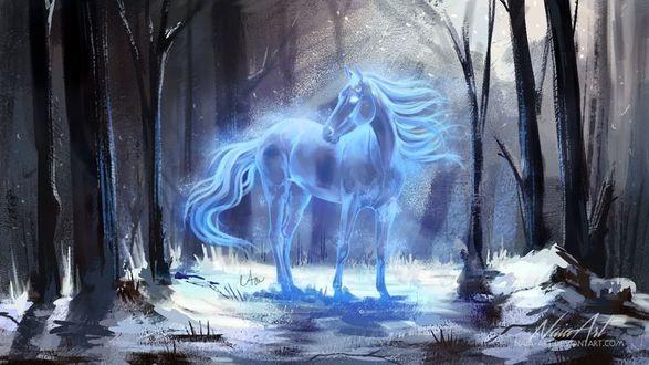 Фото Сказочная лошадь в лесу, by Naia-Art