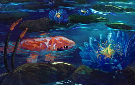 Фото Карп кои в пруду, by RainbowPhilosopher