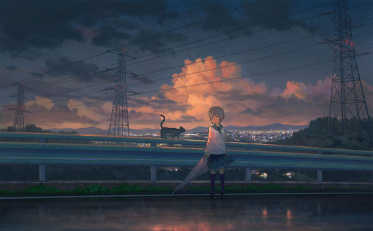 Фото Девочка с зонтом в руке стоит у дорожного ограждения рядом с кошкой на фоне облачного неба