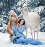 Фото Девушка сидит на снегу рядом с ламами, фотограф Наталья Виноградова