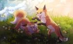 Фото Две лисы играют в траве, by YuMiieru