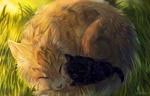 Фото Рыжая кошка и черный котенок спят на траве, by YuMiieru